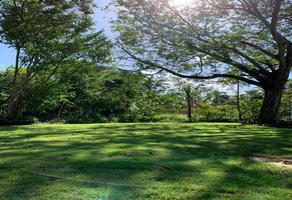 Foto de terreno habitacional en venta en luis donaldo colosio , supermanzana 85, benito juárez, quintana roo, 0 No. 01