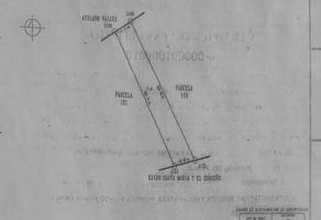 Foto de terreno habitacional en venta en  , maclovio herrera (santa rosa), hidalgo del parral, chihuahua, 13966534 No. 01