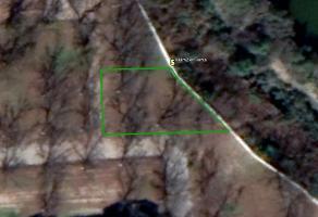 Foto de terreno habitacional en venta en madrid , real del mezquital, durango, durango, 6943878 No. 01