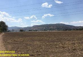 Foto de terreno habitacional en venta en magallanes , camino real, san pedro tlaquepaque, jalisco, 5607767 No. 01
