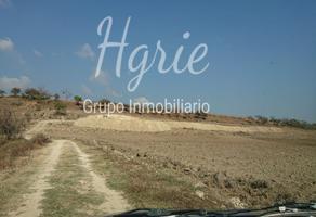 Foto de terreno habitacional en venta en  , magdalena apasco, magdalena apasco, oaxaca, 14264558 No. 01