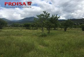 Foto de terreno habitacional en venta en  , magdalena apasco, magdalena apasco, oaxaca, 18398570 No. 01
