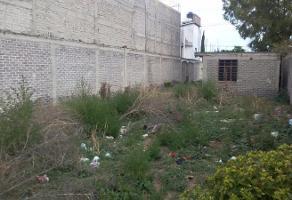 Foto de terreno habitacional en venta en  , magdalena de los reyes, la paz, méxico, 11830428 No. 01