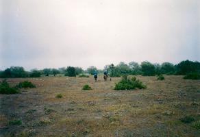 Foto de terreno habitacional en venta en  , magisterial rio verde, rioverde, san luis potosí, 0 No. 01