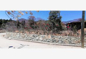 Foto de terreno habitacional en venta en magnolia , san andres huayapam, san andrés huayápam, oaxaca, 0 No. 01