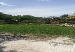 Foto de terreno habitacional en venta en mahahual beach , mahahual, othón p. blanco, quintana roo, 0 No. 01