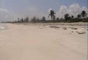 Foto de terreno habitacional en venta en  , mahahual, othón p. blanco, quintana roo, 10503569 No. 01