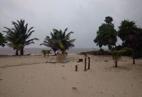Foto de terreno habitacional en venta en  , mahahual, othón p. blanco, quintana roo, 11750679 No. 01