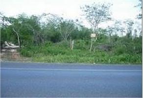 Foto de terreno habitacional en venta en  , mahahual, othón p. blanco, quintana roo, 14403950 No. 01