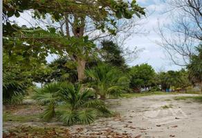 Foto de terreno habitacional en venta en  , mahahual, othón p. blanco, quintana roo, 19231775 No. 01