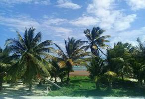 Foto de terreno habitacional en venta en  , mahahual, othón p. blanco, quintana roo, 21158906 No. 01