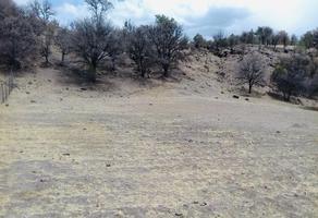 Foto de terreno habitacional en venta en  , majalca, chihuahua, chihuahua, 0 No. 01
