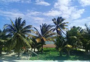 Foto de terreno habitacional en venta en malecón mahahual 0, mahahual, othón p. blanco, quintana roo, 0 No. 01