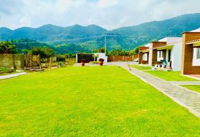 Foto de casa en venta en . ., malinalco, malinalco, méxico, 6523999 No. 01