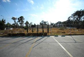 Foto de terreno habitacional en venta en  , malintzi, puebla, puebla, 0 No. 01
