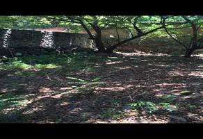 Foto de terreno habitacional en venta en manantiales , chapultepec, cuernavaca, morelos, 0 No. 01