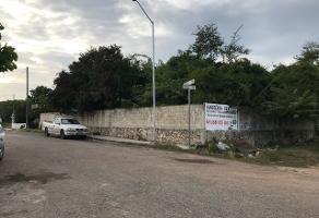 Foto de terreno habitacional en venta en  , manuel avila camacho, mérida, yucatán, 14259939 No. 01