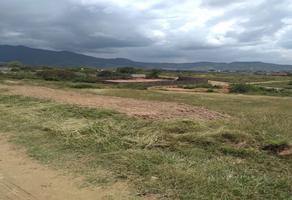 Foto de terreno habitacional en venta en manzana 30 , santiago etla, san lorenzo cacaotepec, oaxaca, 16939187 No. 01
