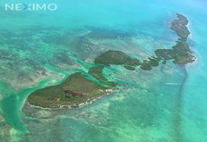 Foto de terreno comercial en venta en mar caribe punta allen 86, isla de holbox, lázaro cárdenas, quintana roo, 22171094 No. 01