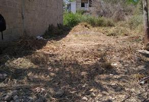 Foto de terreno habitacional en venta en  , maravillas vallarta, puerto vallarta, jalisco, 15560463 No. 01