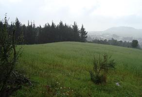 Foto de terreno industrial en venta en mariano escobedo 28, san miguel ajusco, tlalpan, df / cdmx, 7224885 No. 01