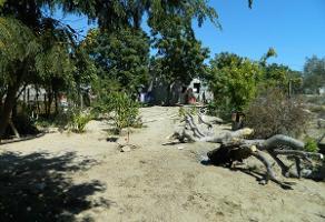 Foto de terreno habitacional en venta en  , marquez de leon, la paz, baja california sur, 13783018 No. 01