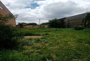 Foto de terreno habitacional en venta en marraqueta , tierra blanca, san luis potosí, san luis potosí, 0 No. 01