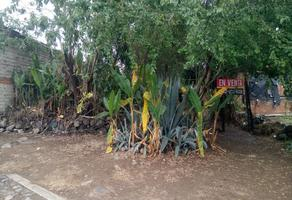 Foto de terreno habitacional en venta en martha dueñas , privada villas del palmar, villa de álvarez, colima, 13323888 No. 01