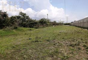 Foto de terreno habitacional en venta en  , martin a martinez, altamira, tamaulipas, 0 No. 01