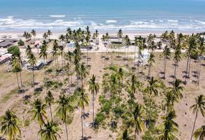 Foto de terreno industrial en venta en mata de palpa , playa novillero, tecuala, nayarit, 16458379 No. 01