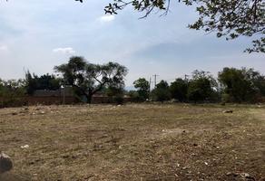 Foto de terreno habitacional en venta en matamoros s.n., santa ana tepetitlán, zapopan, jalisco, 0 No. 01