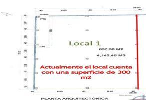 Foto de local en renta en matamoros , teziutlán centro, teziutlán, puebla, 20198983 No. 01