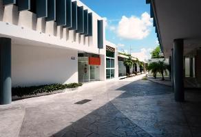 Foto de edificio en renta en  , paraíso, mérida, yucatán, 12495608 No. 01