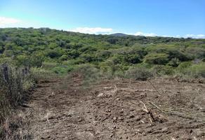 Foto de terreno habitacional en venta en mazatepec , puente de ixtla centro, puente de ixtla, morelos, 18307539 No. 01