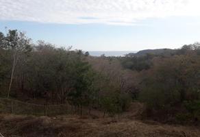 Foto de terreno habitacional en venta en  , mazunte, santa maría tonameca, oaxaca, 16573021 No. 01
