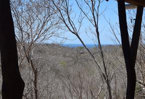 Foto de terreno habitacional en venta en mazunte s/n , mazunte, santa maría tonameca, oaxaca, 0 No. 01