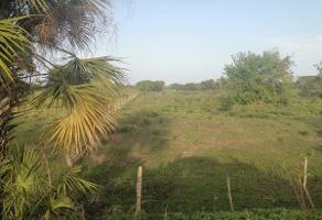Foto de terreno habitacional en venta en  , medellin de bravo, medellín, veracruz de ignacio de la llave, 15737202 No. 01