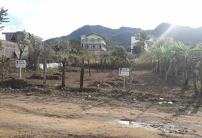 Foto de terreno habitacional en venta en medellín , lomas de coapinole, puerto vallarta, jalisco, 0 No. 01
