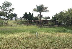 Foto de terreno habitacional en venta en melchor ocampo 1, san pablo etla, san pablo etla, oaxaca, 12220909 No. 01