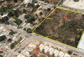 Foto de terreno habitacional en venta en  , meliton salazar, mérida, yucatán, 14179228 No. 01