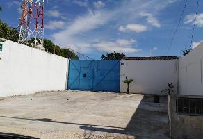 Foto de nave industrial en venta en  , merida centro, mérida, yucatán, 14263703 No. 01