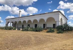 Foto de rancho en venta en  , merida centro, mérida, yucatán, 18675620 No. 01