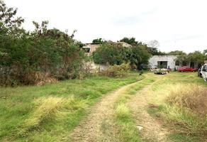 Foto de terreno habitacional en venta en  , merida centro, mérida, yucatán, 19364375 No. 01