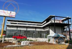 Foto de local en renta en  , mérida, mérida, yucatán, 11177644 No. 01