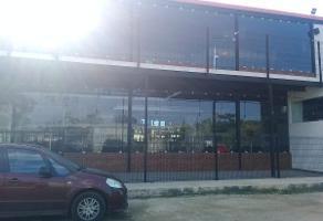 Foto de edificio en venta en  , mérida, mérida, yucatán, 11647588 No. 01
