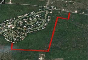 Foto de terreno comercial en venta en  , mérida, mérida, yucatán, 0 No. 01
