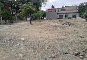Foto de terreno habitacional en venta en mesquite , loma bonita, tuxtla gutiérrez, chiapas, 0 No. 01