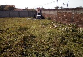 Foto de terreno comercial en venta en  , metlaltoyuca, francisco z. mena, puebla, 14672792 No. 01