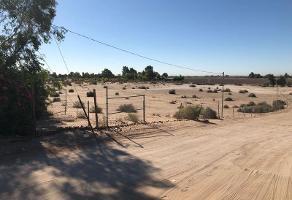 Foto de terreno habitacional en venta en  , mexicali, mexicali, baja california, 11705442 No. 01