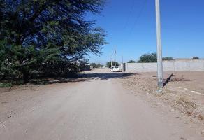 Foto de terreno habitacional en venta en  , mexicali, mexicali, baja california, 11705466 No. 01